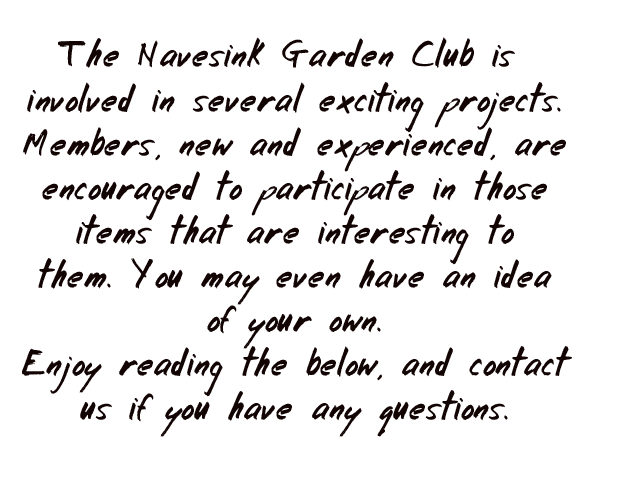 Intro-for-NGC-club-projects-in-whiteboard-font-8-15