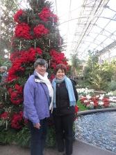 ngc trip to longwood gardens holiday lights 12-18 (12)