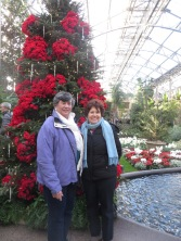 ngc trip to longwood gardens holiday lights 12-18 (12)