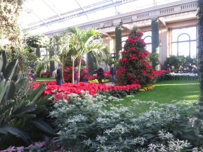 ngc trip to longwood gardens holiday lights 12-18 (62)