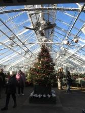 ngc trip to longwood gardens holiday lights 12-18 (77)