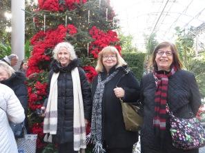 ngc trip to longwood gardens holiday lights 12-18 (9)