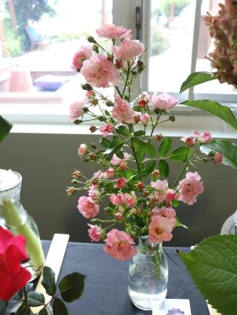 ngc flower show 9-19 10